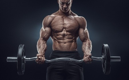 Free Bodybuilding Articles Training Nutrition And Supplements