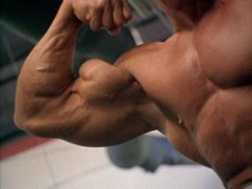 split biceps
